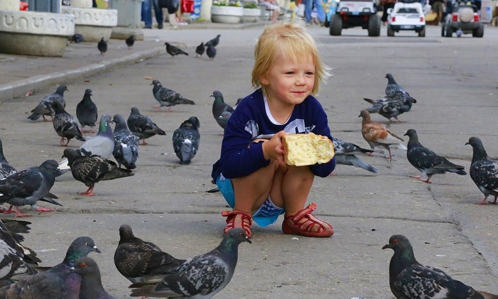 co robić w Warszawie z dziećmi